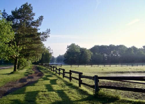 Blick auf die Weiden vom Reiterhof Severloh am morgen