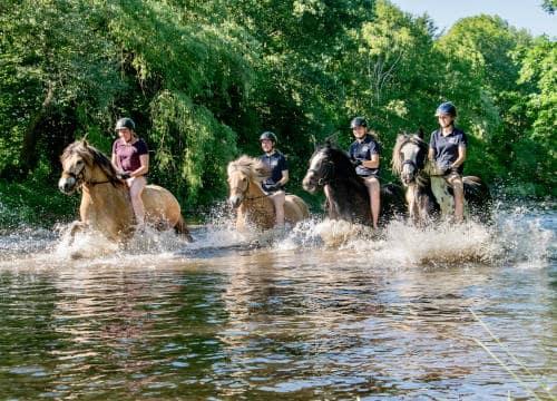 Vier Gäste vom Reiterhof Severloh reiten durch das Wasser ohne Sattel