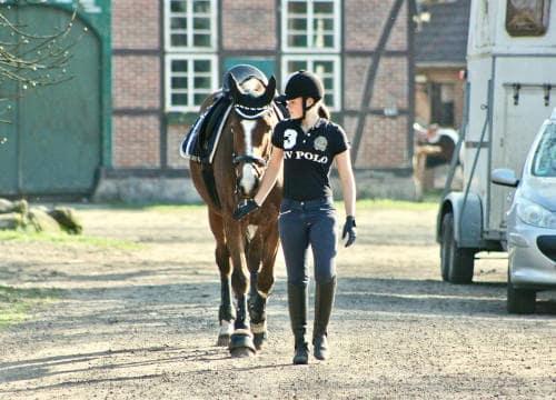 Englisch Reiterin führt ihr Pferd über den Reiterhof Severloh