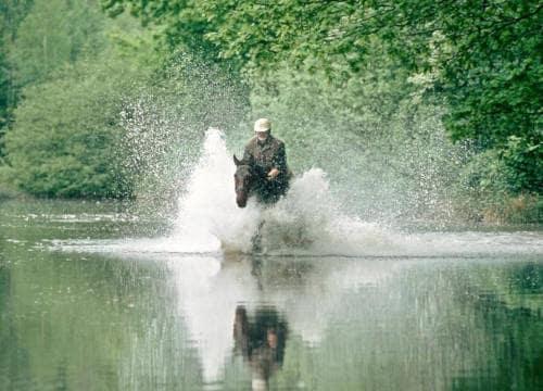 Ein Gast vom Reiterhf Severloh galoppiert durch das Wasser im Pferdeteich