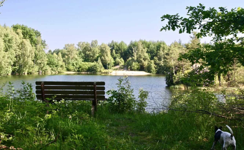 Blick über den schönen Badesee auf dem Ferienhof Severloh