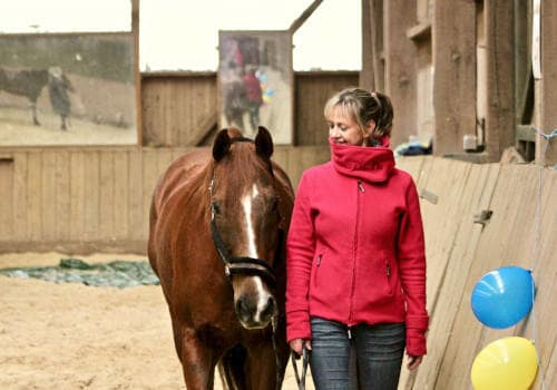 Handtraining mit Pferd und Frau in der Reithalle vom Reiterhof Severloh