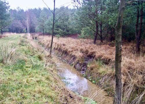 Reitweg mit abwechslungsreicher Landschaft und Wassergraben im Gelaende vom Reiterhof Severloh