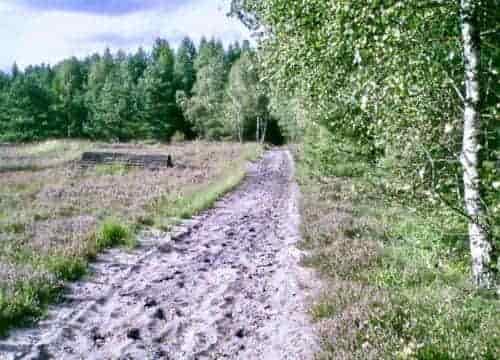 Heidesand Reitweg mit Natursprung im Gelände vom Reiterhof Severloh