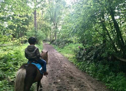 Kind auf Pony auf dem Reitweg vom Reiterhof Severloh