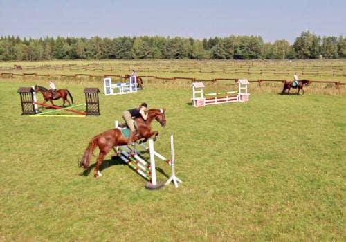 Reiterin springt mit ihrem Pferd über ein Hindernis auf dem Springplatz vom Reiterhof Severloh
