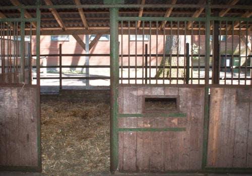 In Stallungen offene Tür zur Balkonbox auf Reiterhof Severloh