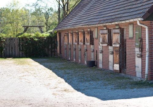 Klappboxen Stallungen Ansicht vom Reiterhof Severloh