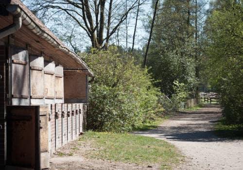 Blick auf den Klappboxenstall unten auf dem Reiterhof Severloh