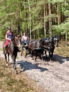 Kutschengespann und Reiter auf den Reitwegen vom Reiterhof Severloh