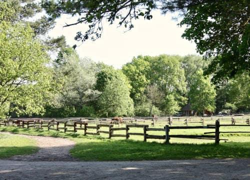 Blick auf die Weiden bei den Stallungen